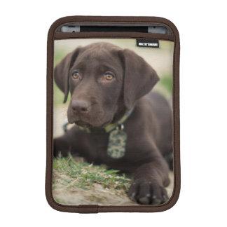 Schokoladen-Labrador-Welpe iPad Mini Sleeve