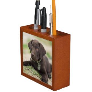 Schokoladen-Labrador-Welpe Stifthalter