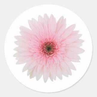Schön erblassen Sie - rosa Runder Aufkleber