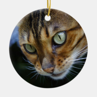 Schöne bengalische Katze Keramik Ornament
