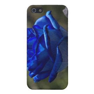 Schöne blaue Rose 1 Etui Fürs iPhone 5