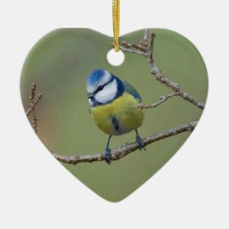 schöne Blaumeise auf Ast sitzend Keramik Ornament