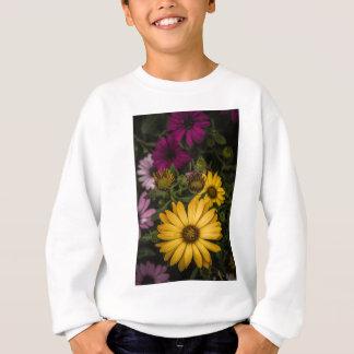 Schöne bunte afrikanische Gänseblümchen, Sweatshirt