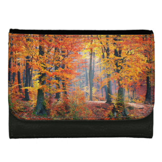 Schöne bunte Herbstwaldsunbeams
