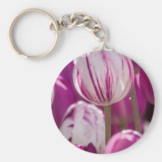 Schöne bunte Tulpen an einem grünen Garten von Ist Standard Runder Schlüsselanhänger