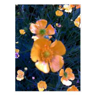 Schöne Butterblumeen Postkarte