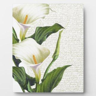 Schöne Calla-Lilien Fotoplatte