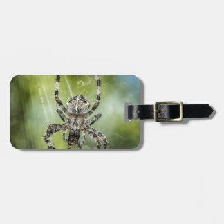 Schöne fallende Spinne auf Netz Gepäckanhänger