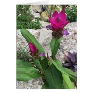 Schöne fuschia Blume Karte