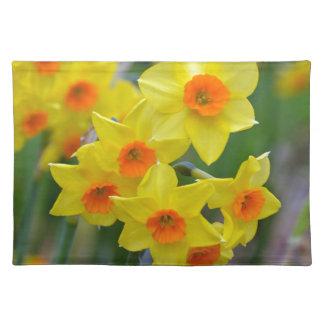Schöne gelbe Frühlingsnarzissen Tischset