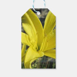 Schöne gelbe Lilie Geschenkanhänger