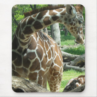 Schöne Giraffe Mousepad