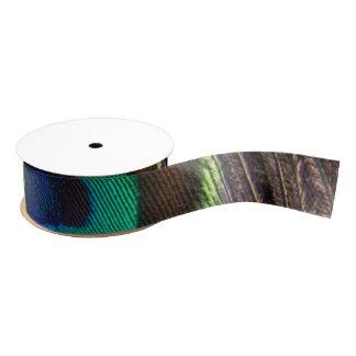 Schöne grüne Pfau-Feder Ripsband