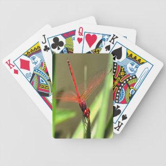 Schöne Kracher-Libelle Bicycle Spielkarten