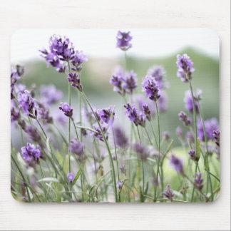 Schöne kundenspezifische Frühlings-Blumen - Mousepad