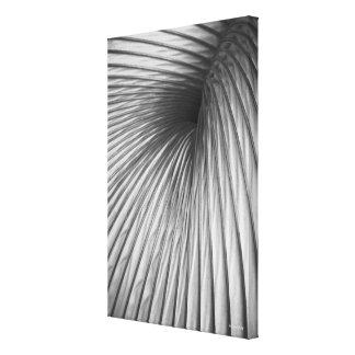 Schöne Kunst, Abstraktions-Extraktion Leinwanddruck