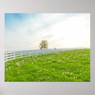 Schöne Landschaftslandschaft im Frühling Poster