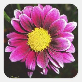 Schöne lila Blume Quadratischer Aufkleber