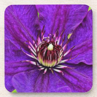 Schöne lila Clematis-Blume Getränkeuntersetzer