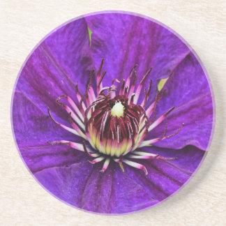 Schöne lila Clematis-Blume Untersetzer