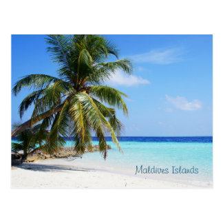 Schöne Malediven-Inseln Postkarte