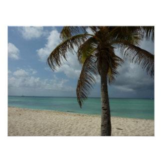 Schöne Natur-Szene Aruban Strand-I Poster