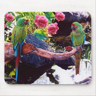 Schöne Papageien mit rosa Blumen - Mousepad