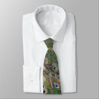 Schöne Pfau-Federn Individuelle Krawatte
