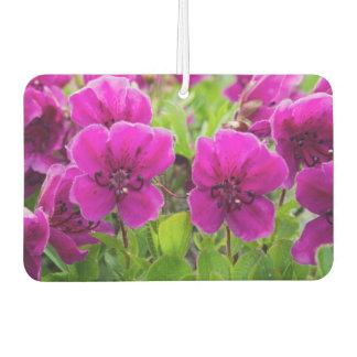 Schöne rosa Blumen Lufterfrischer