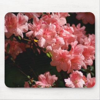 Schöne rosa Blumen Mousepads