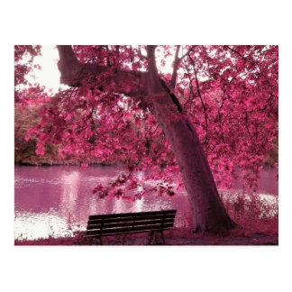 Schöne rosa Blüte überall Postkarte