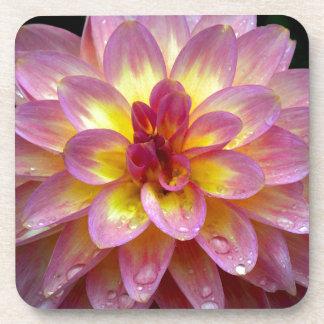 Schöne rosa Dahlie-Blume mit Regentropfen Getränkeuntersetzer