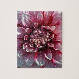 Schöne rosa Dahlie-Blume Puzzle