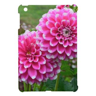 Schöne rosa Dahlien in voller Blüte iPad Mini Hülle