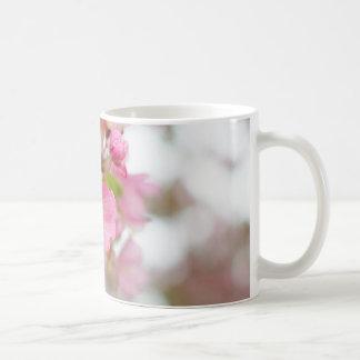 Schöne rosa Holzapfel-Blüten-Kaffee-Tasse Kaffeetasse