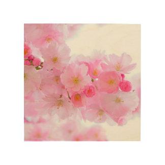Schöne rosa japanische Kirschbaum-Blüte Holzdruck