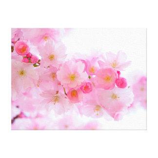 Schöne rosa japanische Kirschbaum-Blüte Leinwanddruck