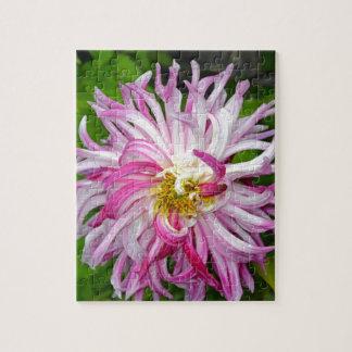 Schöne rosa und weiße Dahlie Puzzle