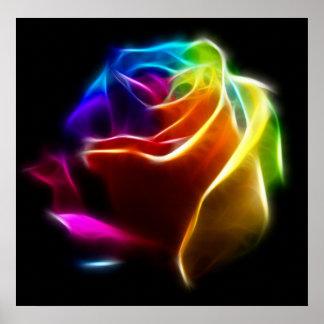 Schöne Rose der Farben No2 Poster
