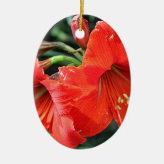Schöne rote Blumen-Fotografie Keramik Ornament