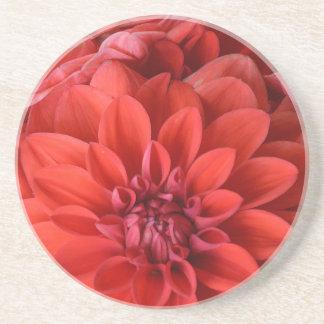 Schöne rote Dahlie-Blumen Sandstein Untersetzer