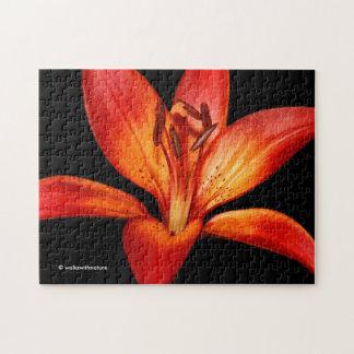 Schöne rote orange asiatische Lilie Gran Paradiso Puzzle