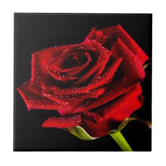 Schöne Rote Rose Keramikfliese