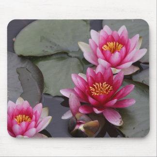 Schöne See-Blumen auf mause Auflage Mousepad