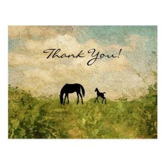 Schöne Silhouette-Stute und Fohlen-Pferd danken Postkarte