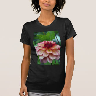 Schöne Singlerosa-Dahlie-Blume T-Shirt