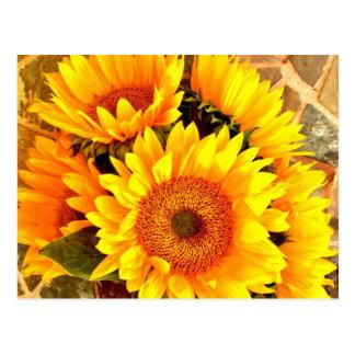 Schöne Sonnenblume-Blumenstrauß-Geschenke Postkarte