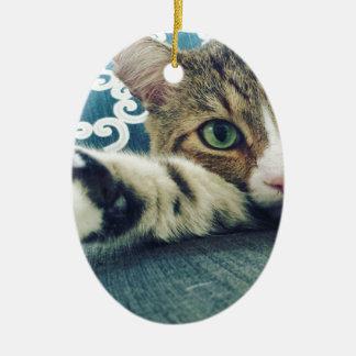 Schöne Tabby-Katze mit grünen Augen Ovales Keramik Ornament