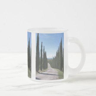 Schöne toskanische Zypresse Mattglastasse