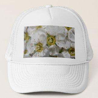 Schöne weiße Bolossom Blumen u. gelbe Mitten Truckerkappe